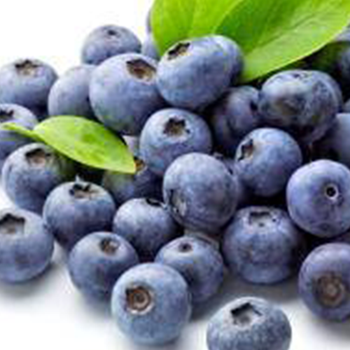 GROW GUIDE Blueberries